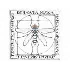 Вечната муха